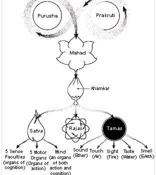 Filosofia Sankhya e o Ayurveda